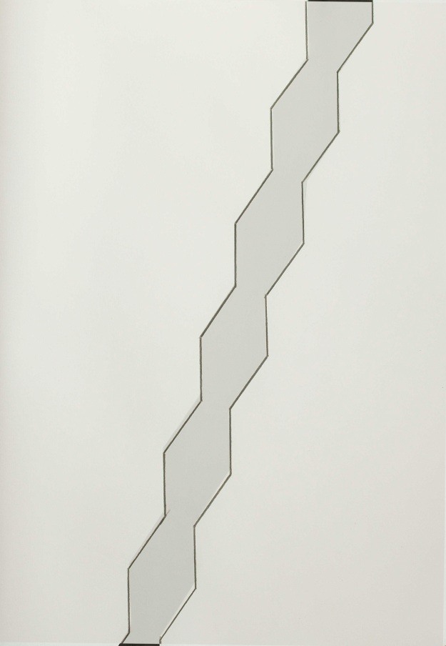 "Shadow Column, twinned drawing and gouache on two sheets of acid free paper. 47 x 35 cm (18.5"" x 13.75"") 2014"